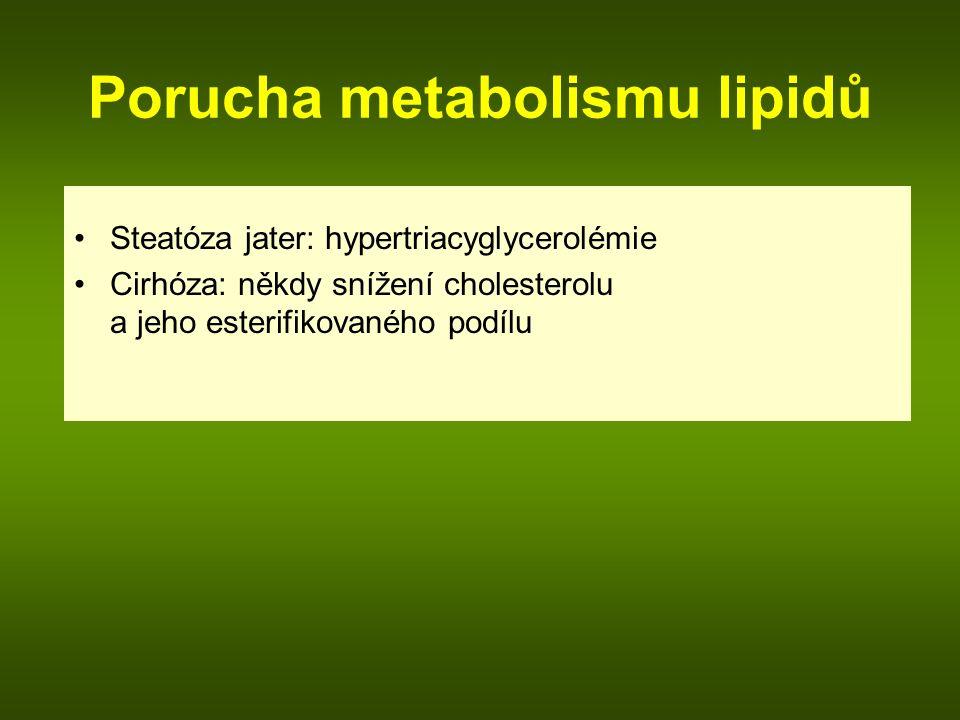 Porucha metabolismu lipidů