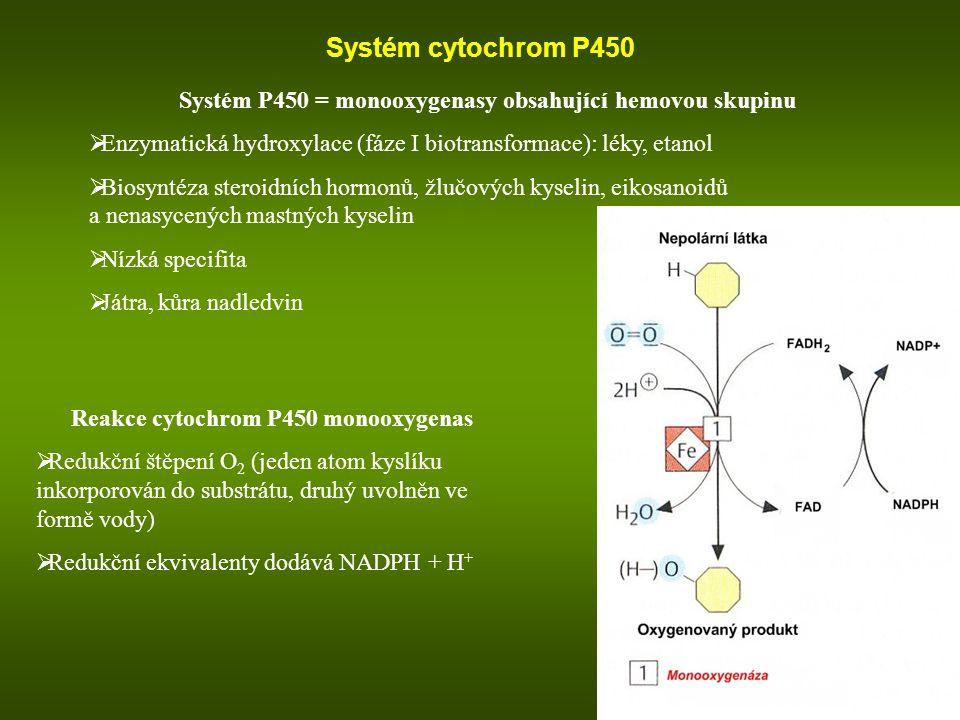 Systém cytochrom P450 Systém P450 = monooxygenasy obsahující hemovou skupinu. Enzymatická hydroxylace (fáze I biotransformace): léky, etanol.