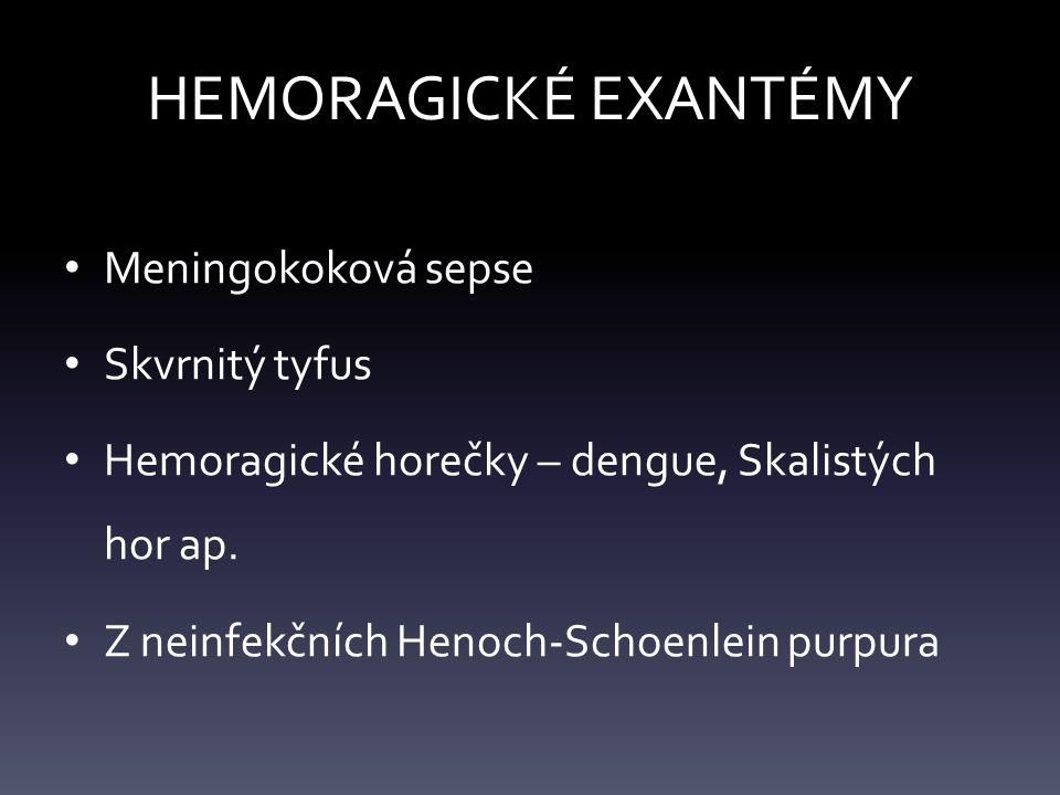 HEMORAGICKÉ EXANTÉMY Meningokoková sepse Skvrnitý tyfus