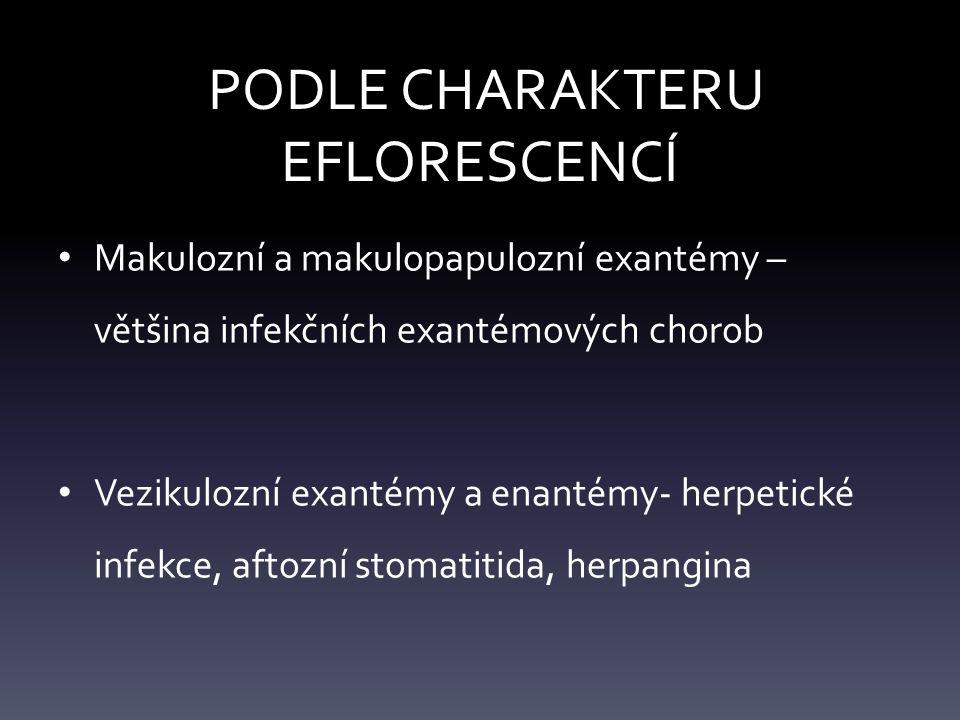 PODLE CHARAKTERU EFLORESCENCÍ