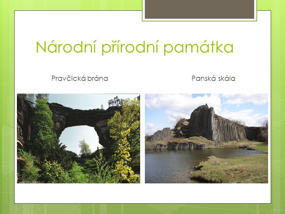 Národní přírodní památka
