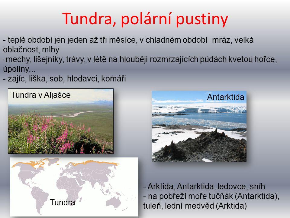 Tundra, polární pustiny