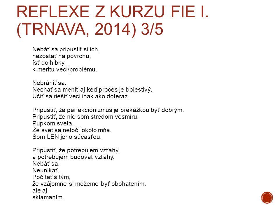 Reflexe z kurzu FIE I. (Trnava, 2014) 3/5