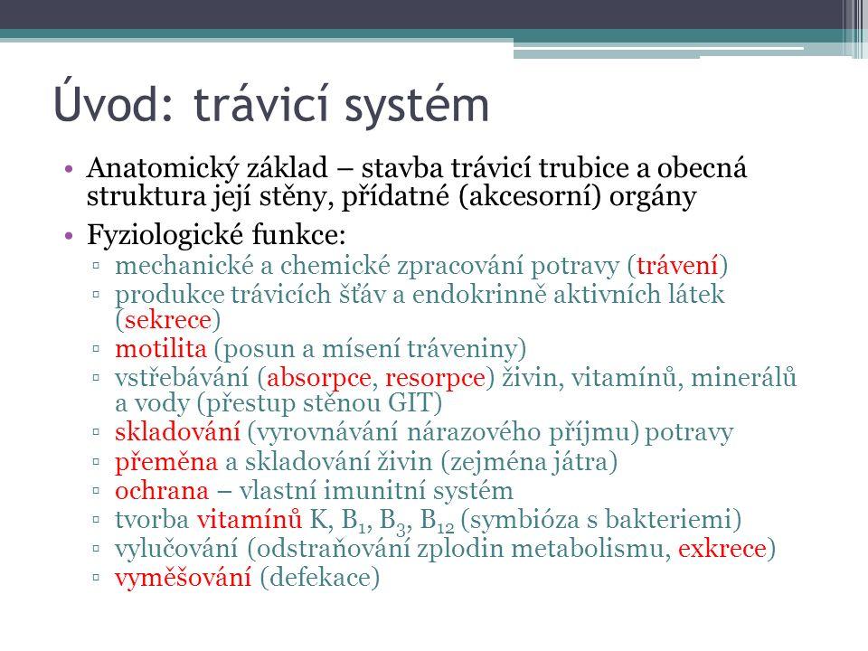 Úvod: trávicí systém Anatomický základ – stavba trávicí trubice a obecná struktura její stěny, přídatné (akcesorní) orgány.