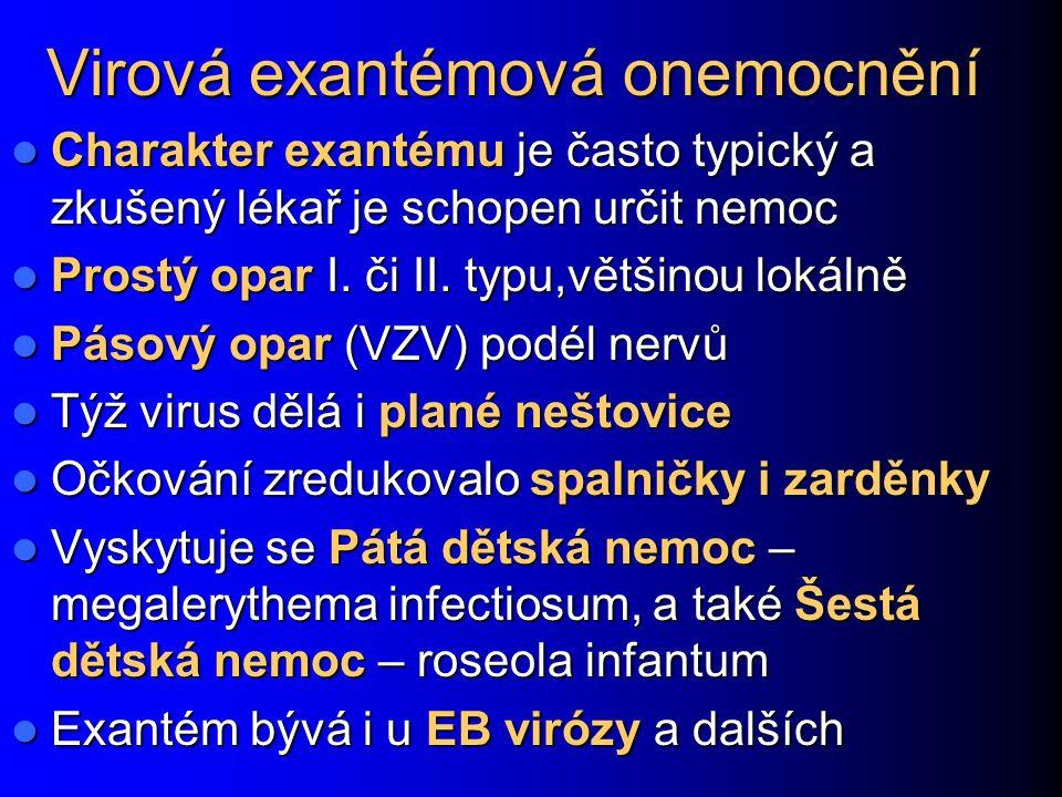 Virová exantémová onemocnění