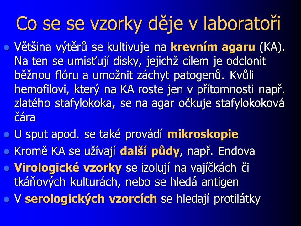 Co se se vzorky děje v laboratoři