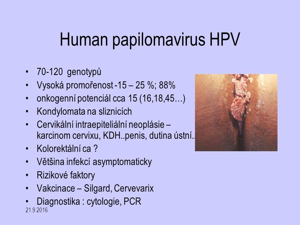 Human papilomavirus HPV