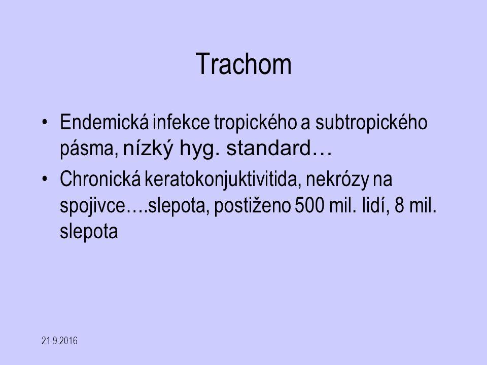 Trachom Endemická infekce tropického a subtropického pásma, nízký hyg. standard…