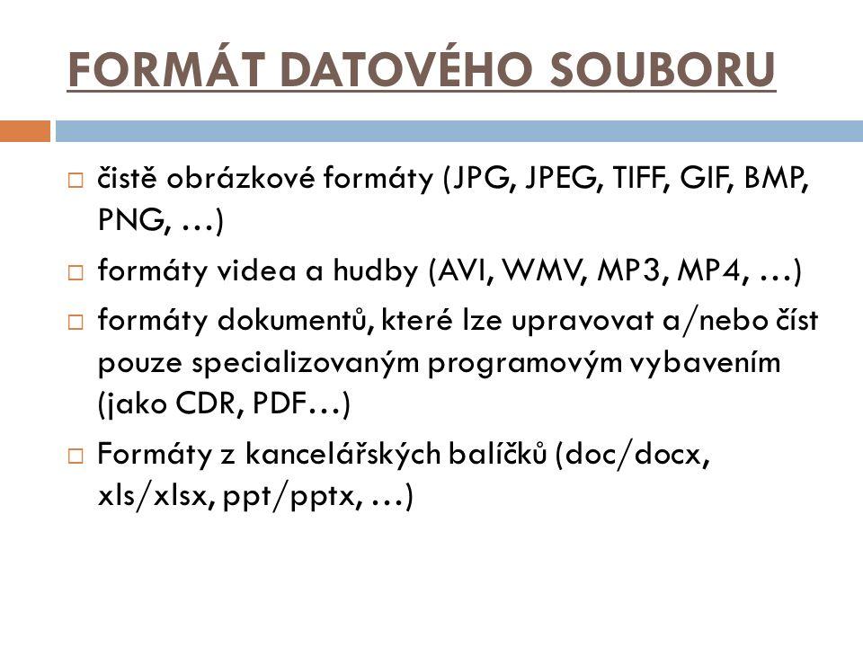 FORMÁT DATOVÉHO SOUBORU