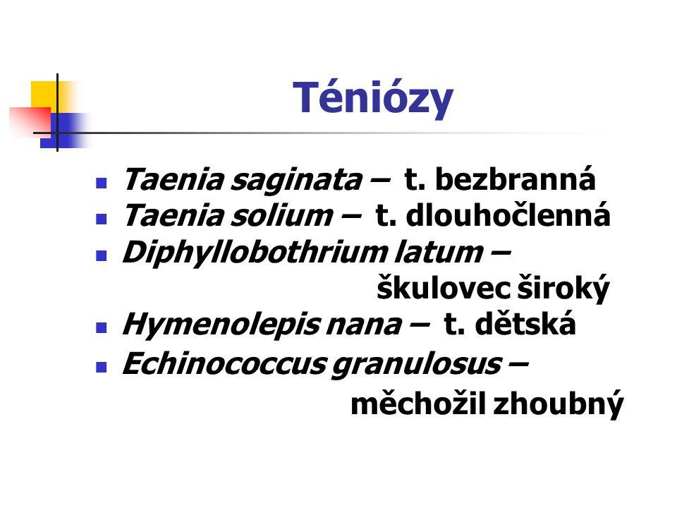 Téniózy Taenia saginata – t. bezbranná Taenia solium – t. dlouhočlenná