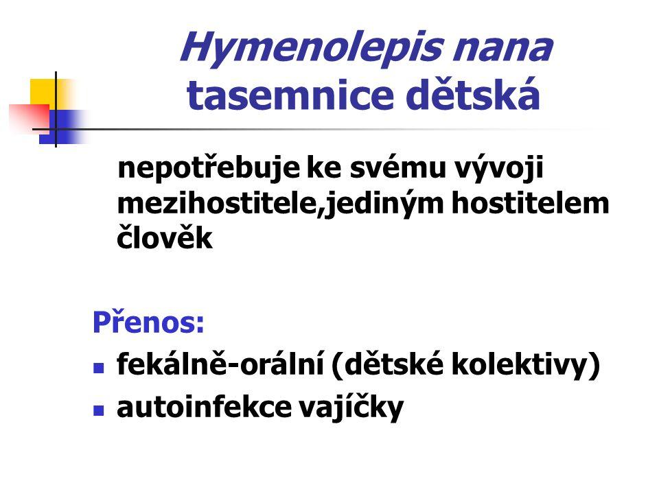 Hymenolepis nana tasemnice dětská