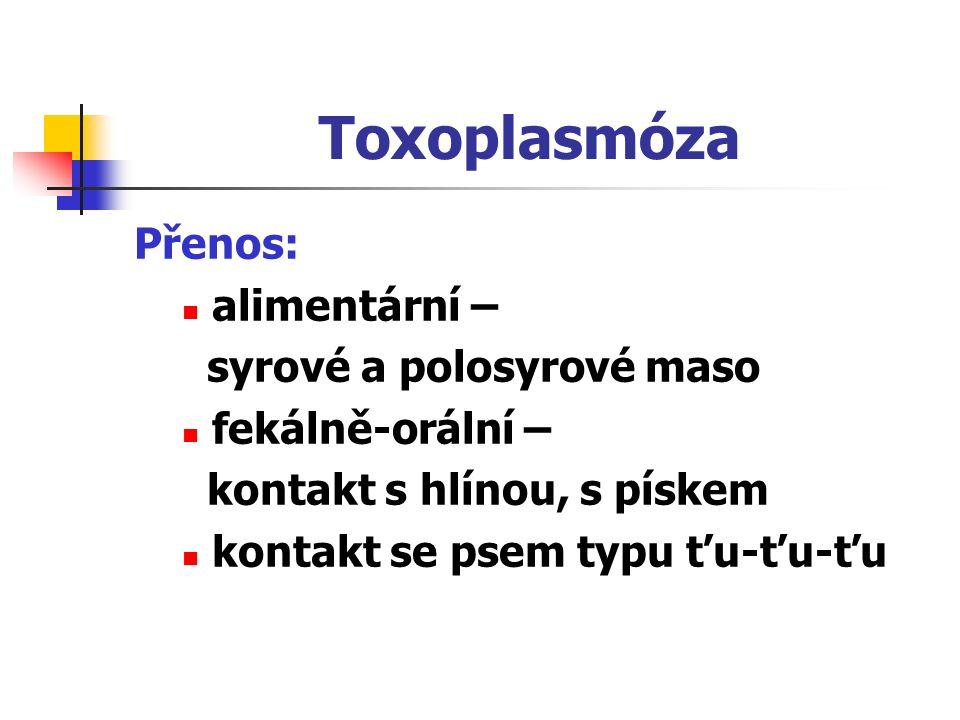 Toxoplasmóza Přenos: alimentární – syrové a polosyrové maso