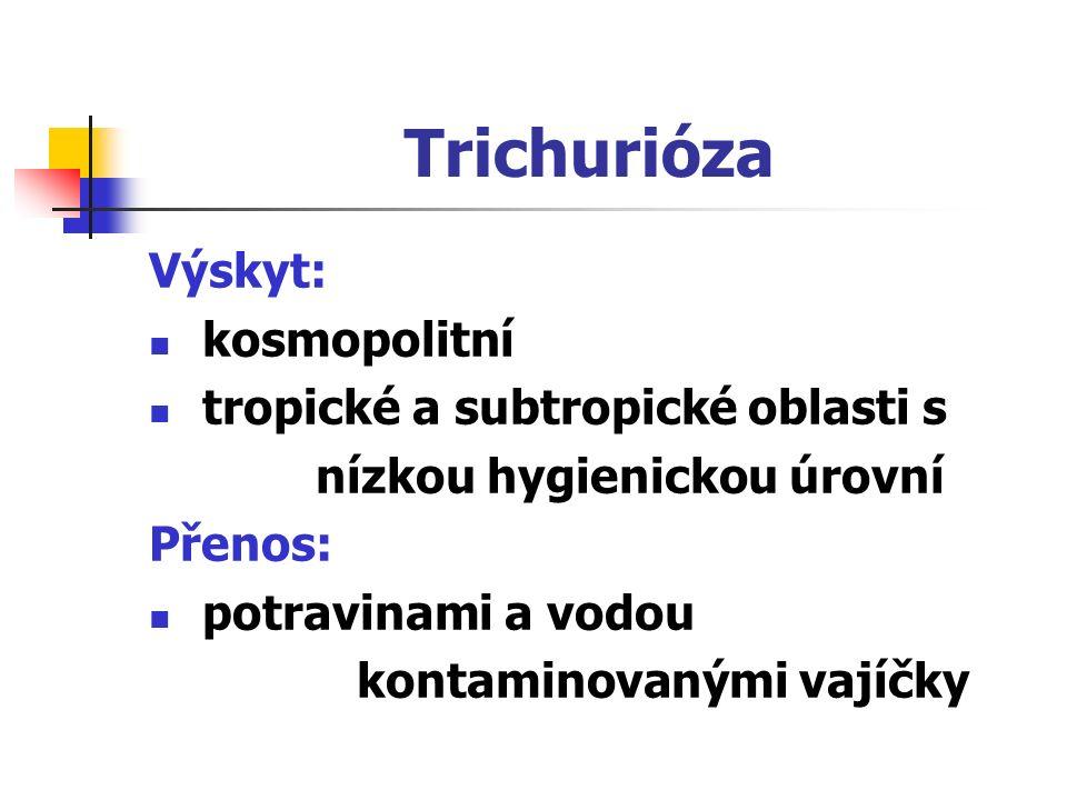 Trichurióza Výskyt: kosmopolitní tropické a subtropické oblasti s