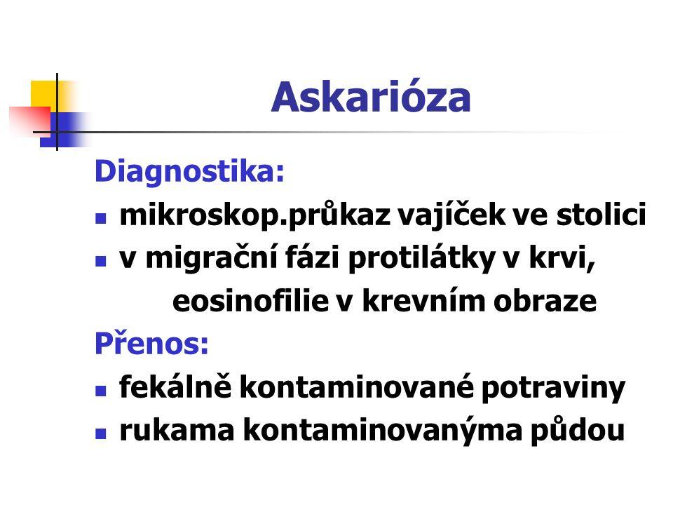 Askarióza Diagnostika: mikroskop.průkaz vajíček ve stolici