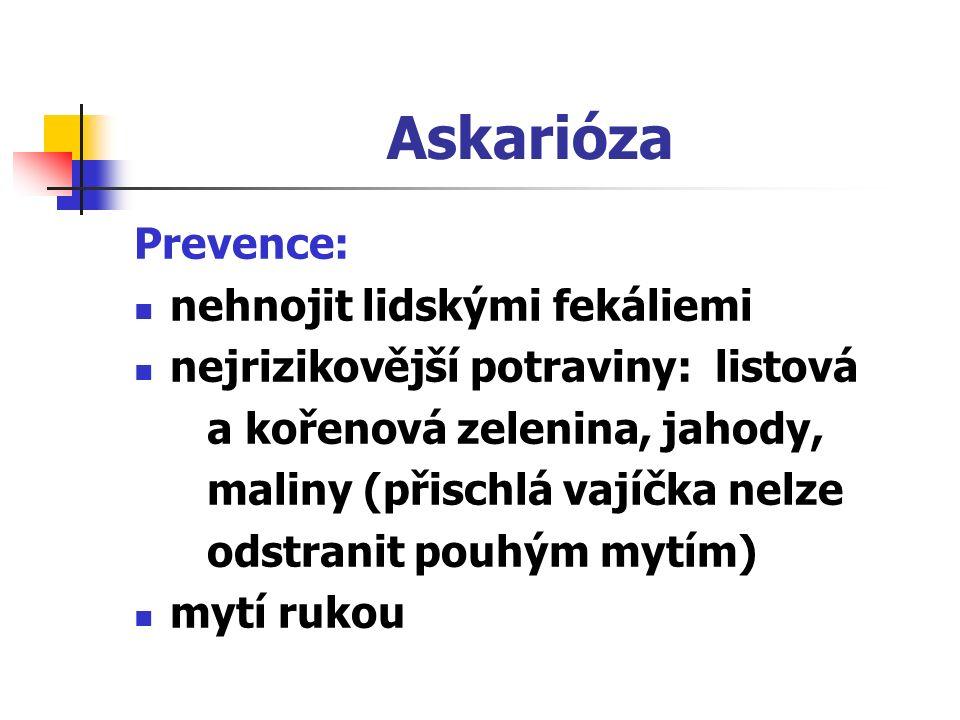 Askarióza Prevence: nehnojit lidskými fekáliemi