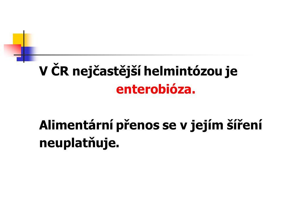 V ČR nejčastější helmintózou je