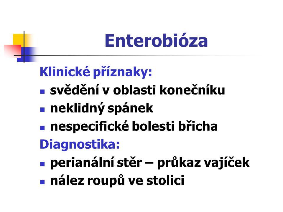 Enterobióza Klinické příznaky: svědění v oblasti konečníku