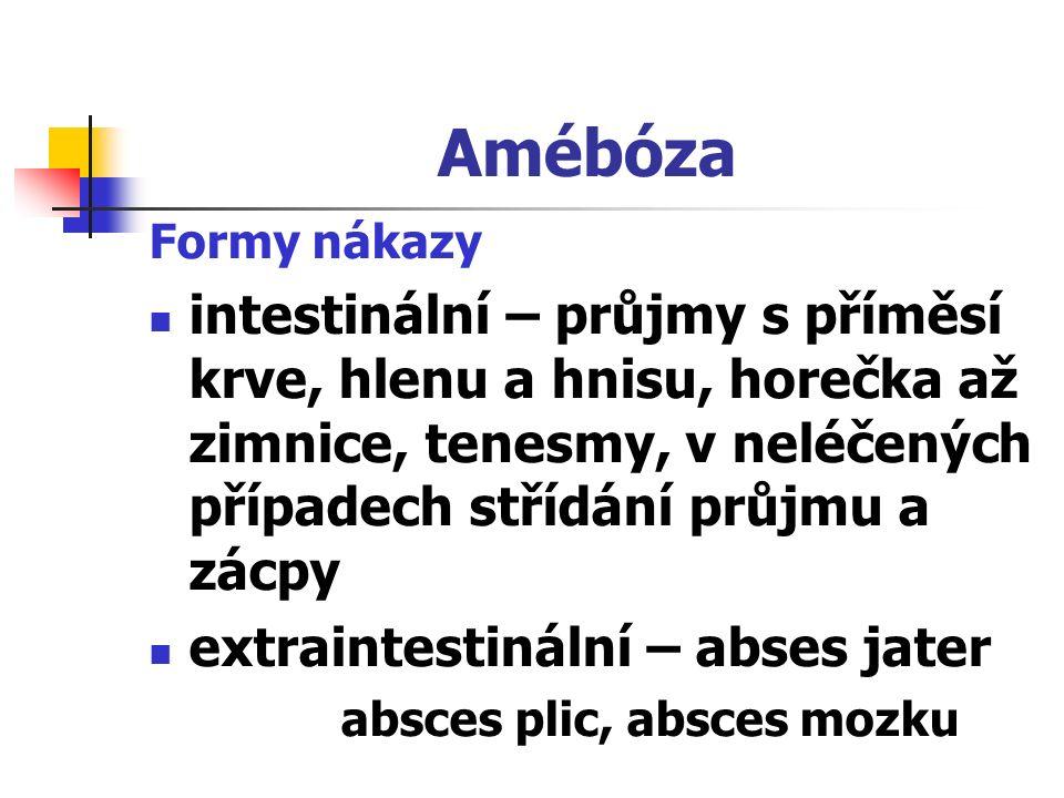 Amébóza Formy nákazy.
