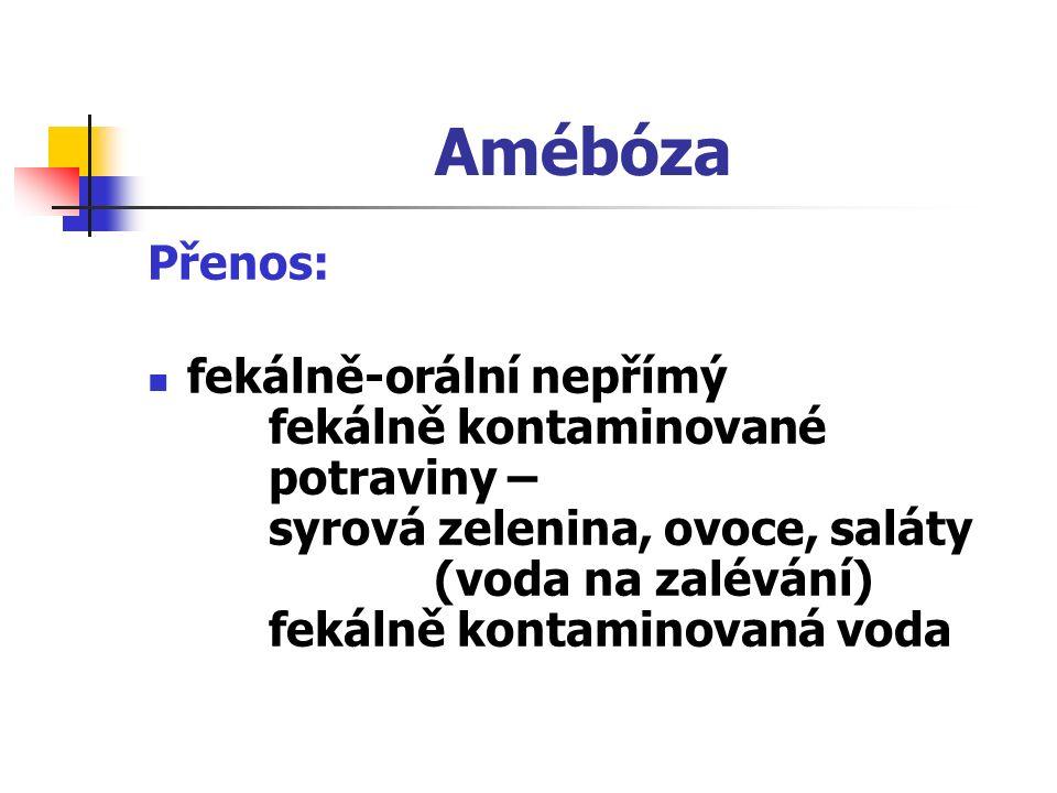 Amébóza Přenos: fekálně-orální nepřímý fekálně kontaminované