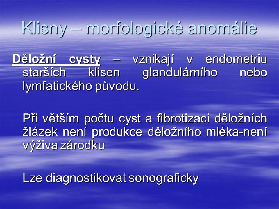 Klisny – morfologické anomálie