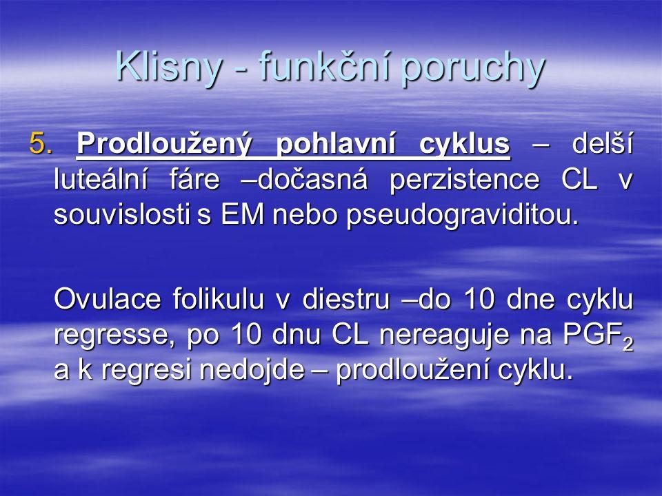 Klisny - funkční poruchy
