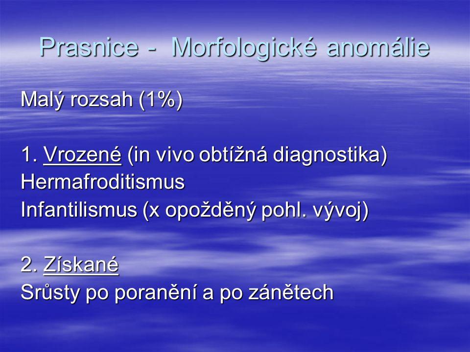 Prasnice - Morfologické anomálie