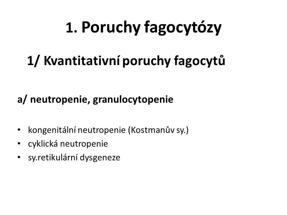 1. Poruchy fagocytózy 1/ Kvantitativní poruchy fagocytů