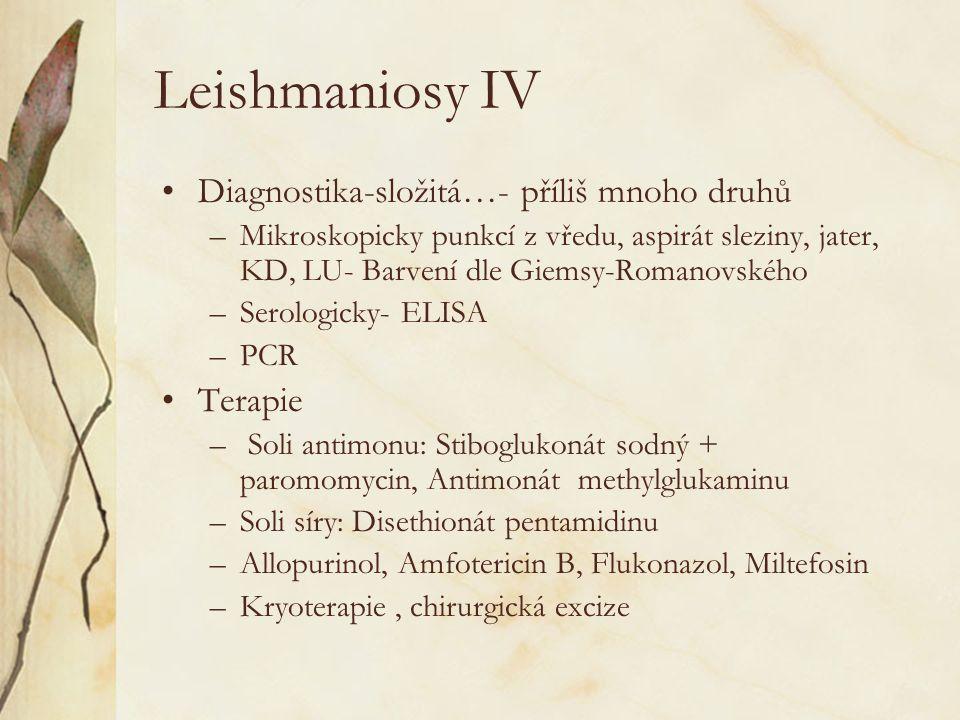 Leishmaniosy IV Diagnostika-složitá…- příliš mnoho druhů Terapie