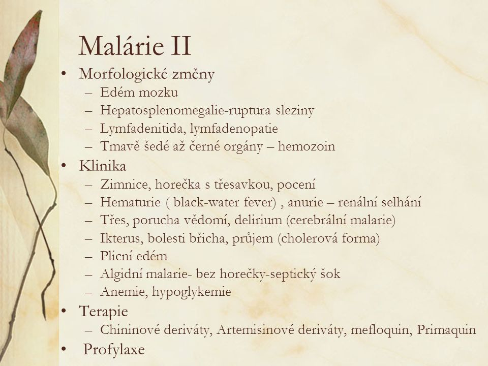 Malárie II Morfologické změny Klinika Terapie Profylaxe Edém mozku