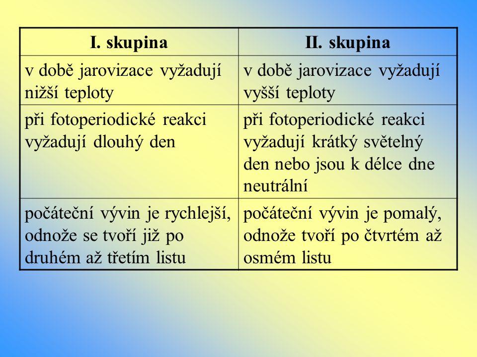 I. skupina II. skupina. v době jarovizace vyžadují nižší teploty. v době jarovizace vyžadují vyšší teploty.