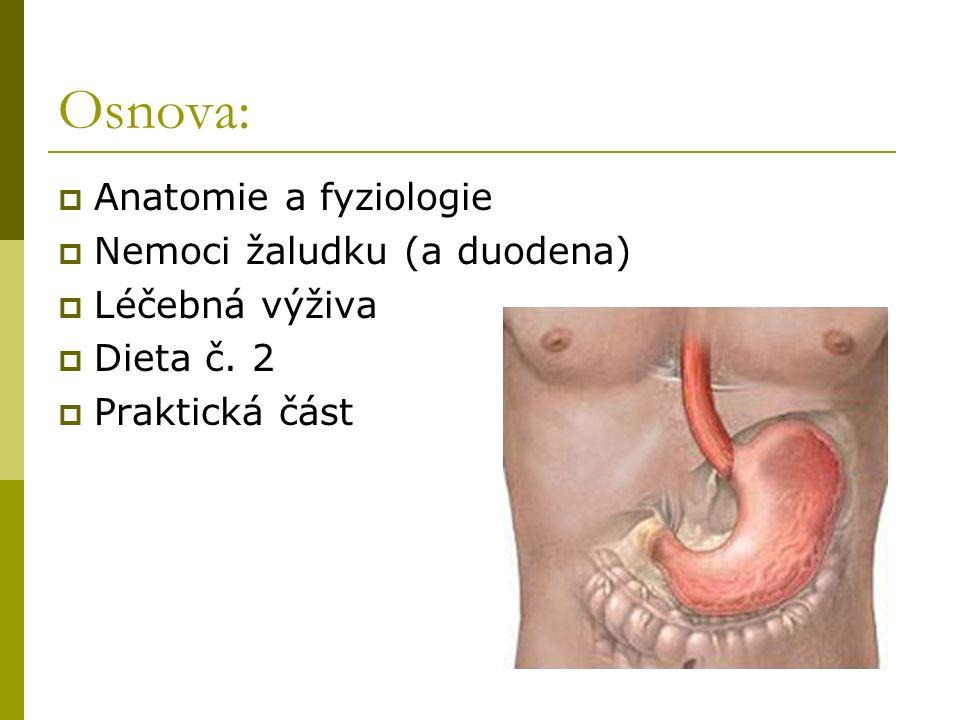 Osnova: Anatomie a fyziologie Nemoci žaludku (a duodena)