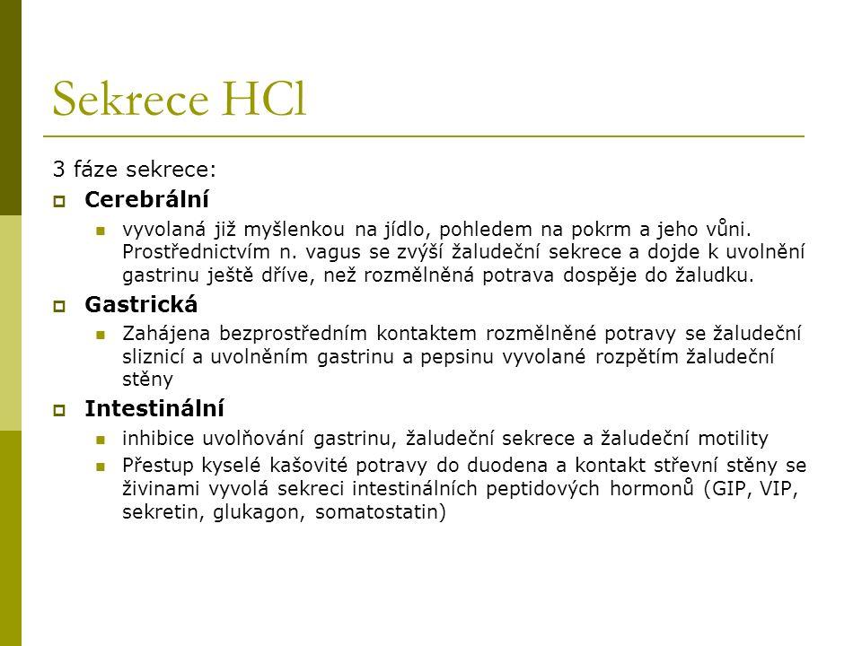 Sekrece HCl 3 fáze sekrece: Cerebrální Gastrická Intestinální