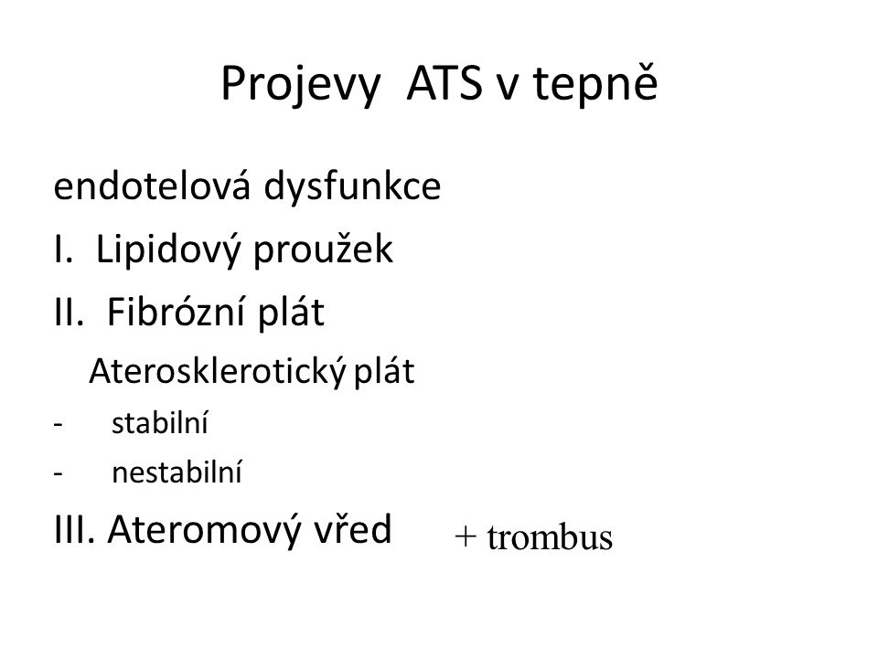 Projevy ATS v tepně endotelová dysfunkce I. Lipidový proužek