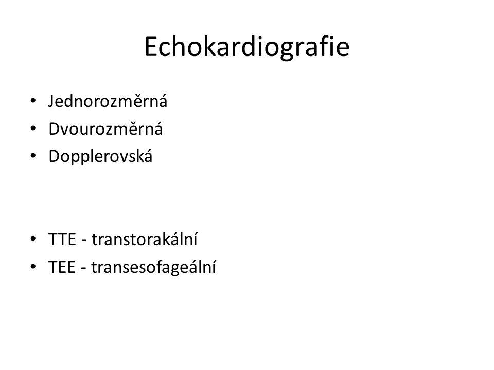 Echokardiografie Jednorozměrná Dvourozměrná Dopplerovská
