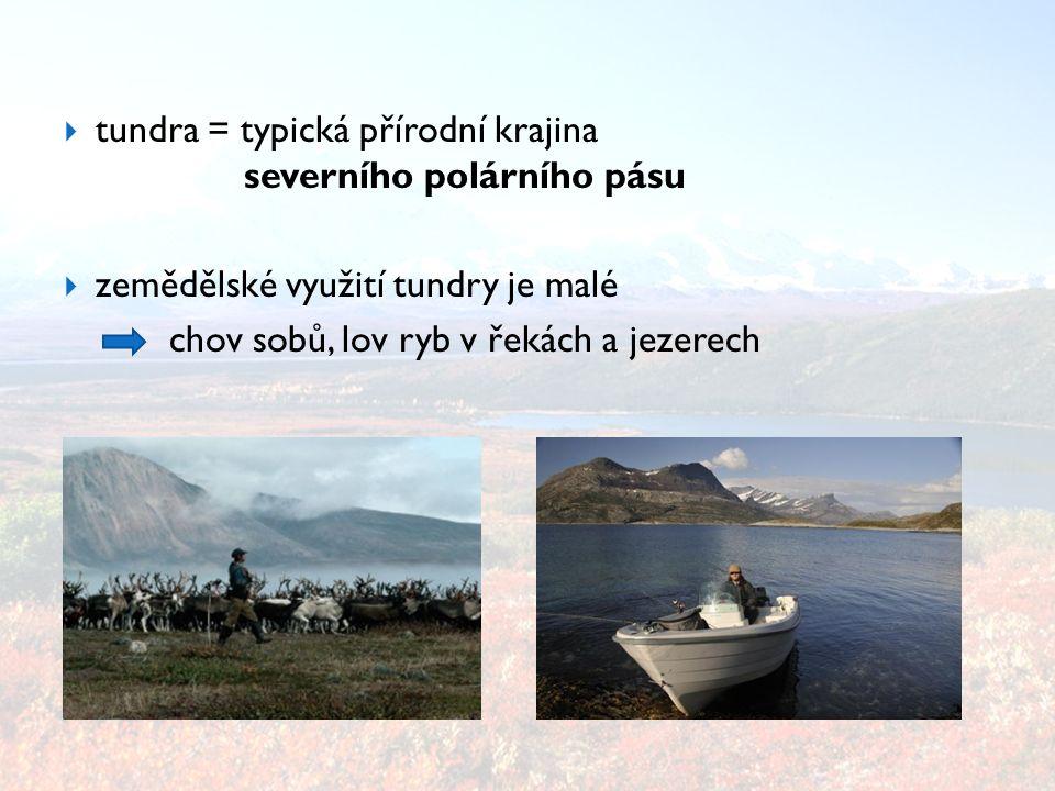 tundra = typická přírodní krajina severního polárního pásu