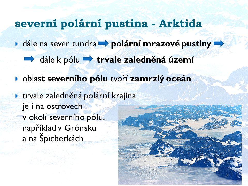 severní polární pustina - Arktida