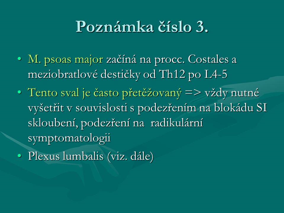 Poznámka číslo 3. M. psoas major začíná na procc. Costales a meziobratlové destičky od Th12 po L4-5.