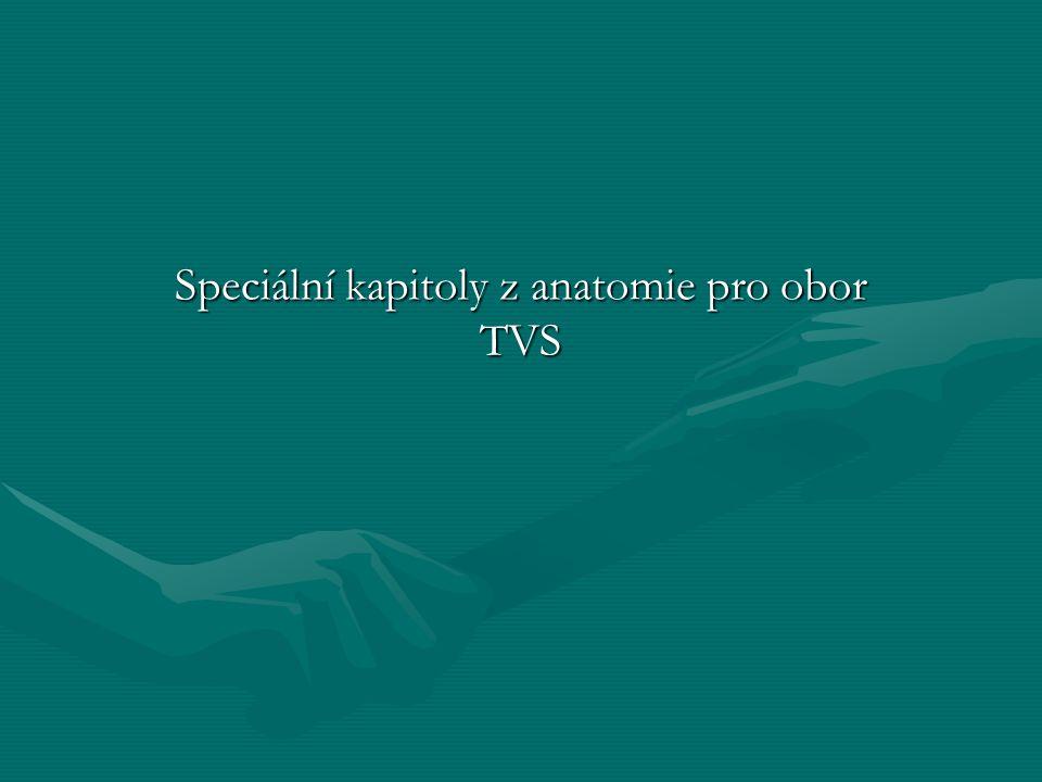 Speciální kapitoly z anatomie pro obor TVS