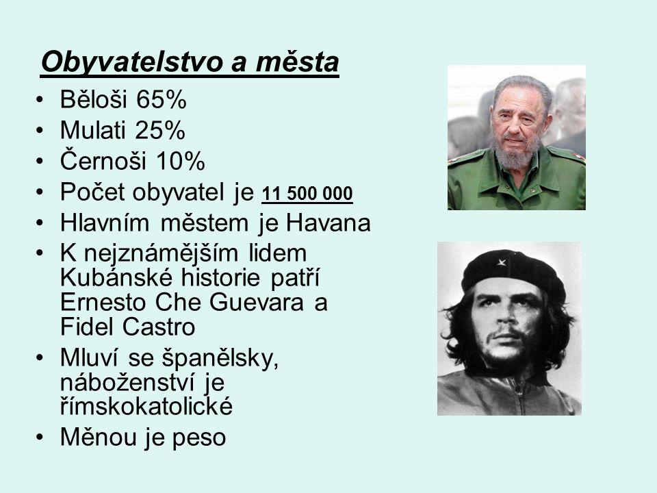 Obyvatelstvo a města Běloši 65% Mulati 25% Černoši 10%