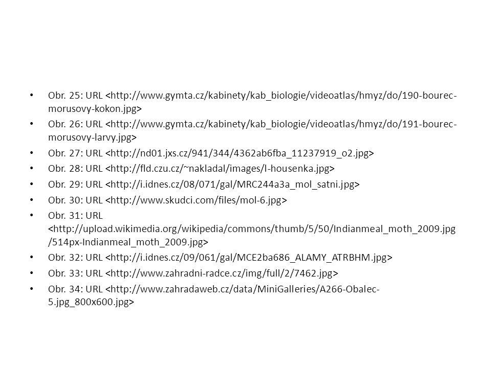 Obr. 25: URL <http://www. gymta