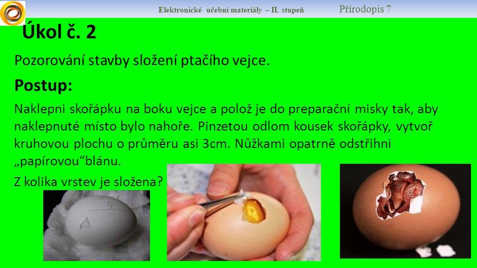 Úkol č. 2 Postup: Pozorování stavby složení ptačího vejce.