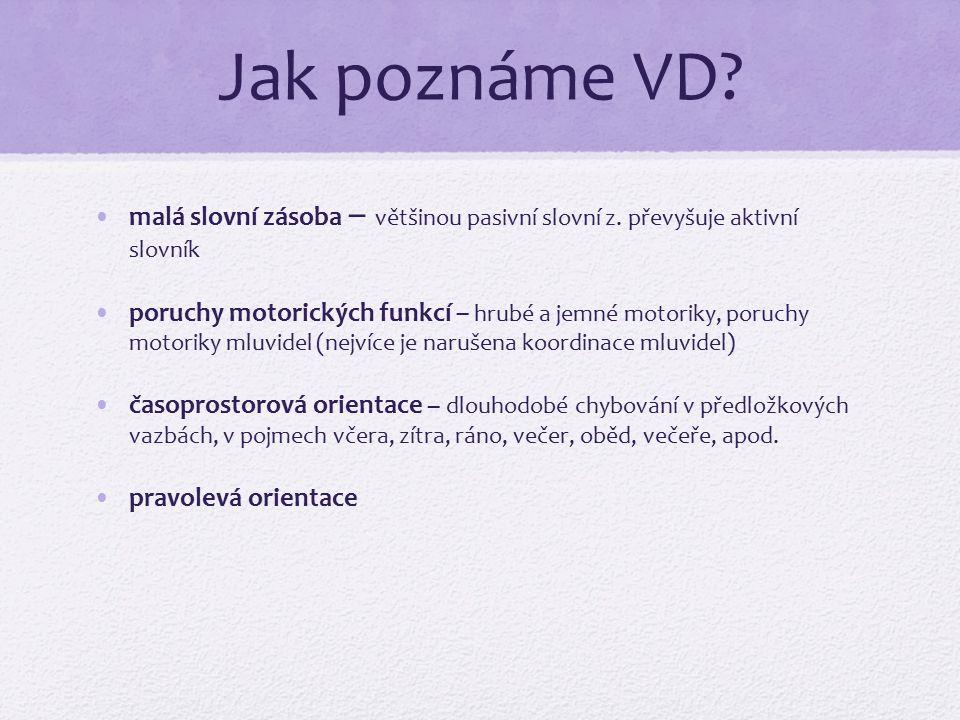 Jak poznáme VD malá slovní zásoba – většinou pasivní slovní z. převyšuje aktivní slovník.