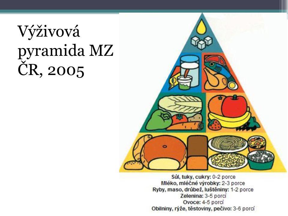 Výživová pyramida MZ ČR, 2005