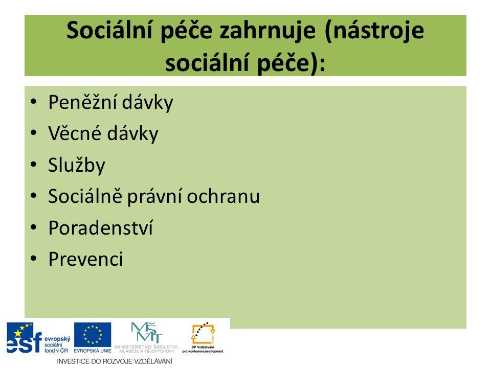 Sociální péče zahrnuje (nástroje sociální péče):