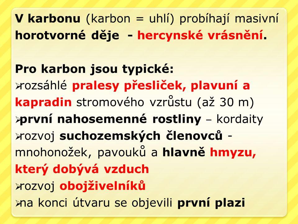 V karbonu (karbon = uhlí) probíhají masivní horotvorné děje - hercynské vrásnění.