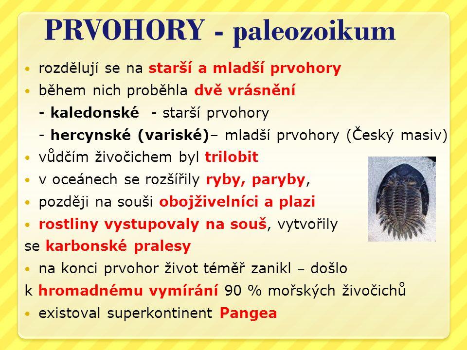 PRVOHORY - paleozoikum