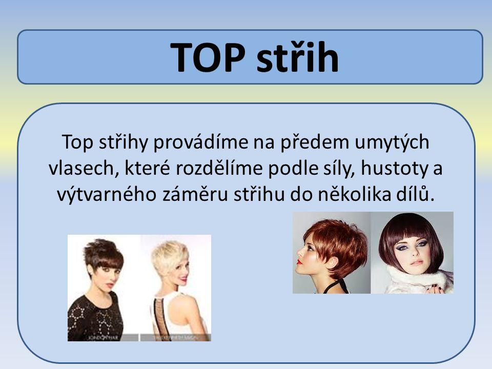 TOP střih Top střihy provádíme na předem umytých vlasech, které rozdělíme podle síly, hustoty a výtvarného záměru střihu do několika dílů.