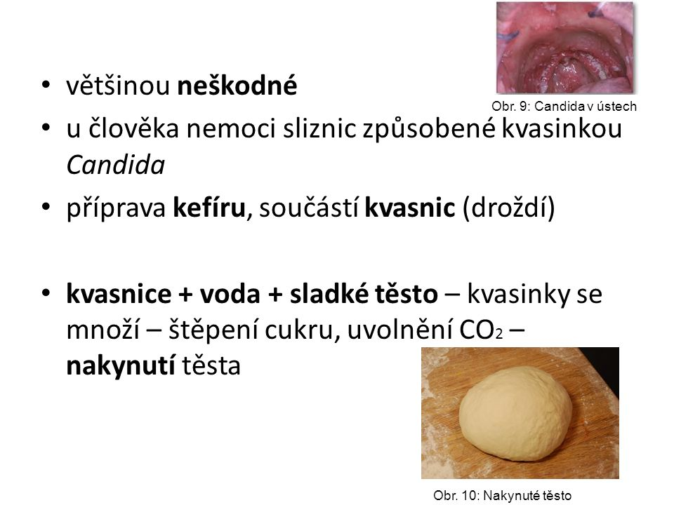 u člověka nemoci sliznic způsobené kvasinkou Candida