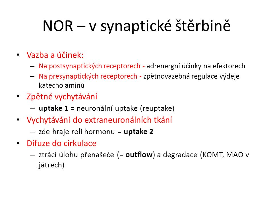 NOR – v synaptické štěrbině