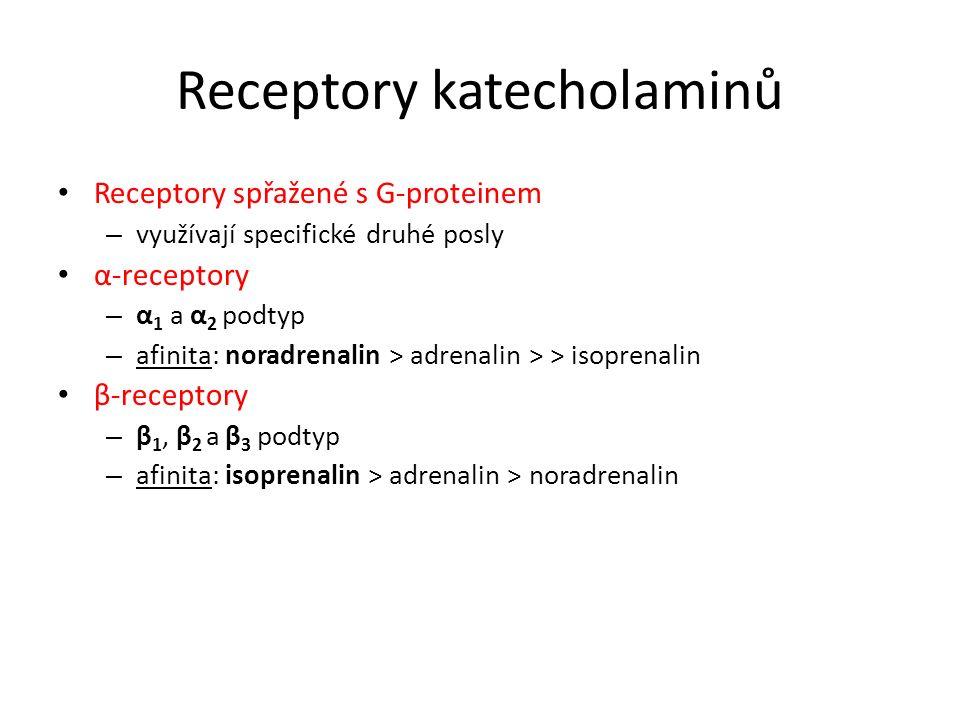 Receptory katecholaminů